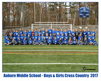 ams xcountry